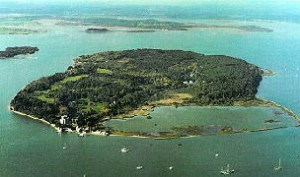 brownsea-304-opt